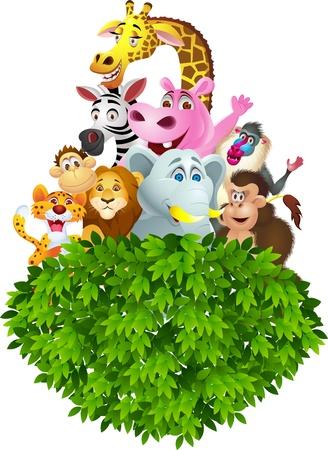 gorila: Animales de dibujos animados