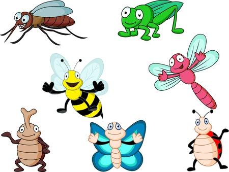 butterfly ladybird: de dibujos animados de insectos