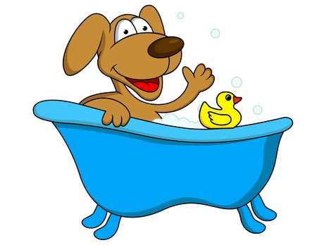 Dog bathing  Stock Vector - 13494890