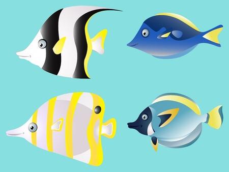 ascendant: Fish collection