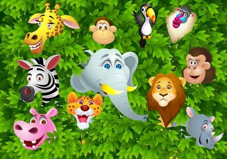 mandril: Animales de dibujos animados
