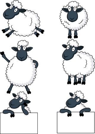 animal leg: ovejas de dibujos animados