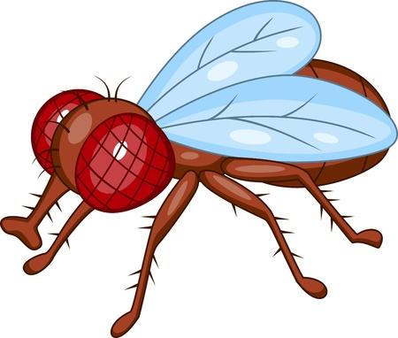 mosca caricatura: vuelan de dibujos animados
