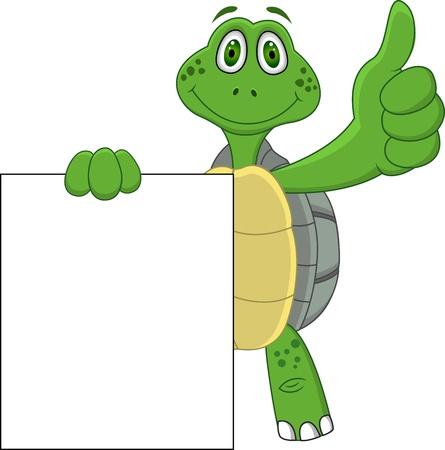 green turtle: Cartone animato tartaruga con pollice in su