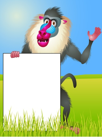 Baboon with blank sign Vector