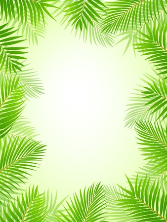 Palm tree frame background Stock Vector - 13497227