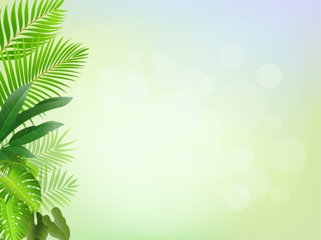 tropical plant: La naturaleza de fondo Vectores