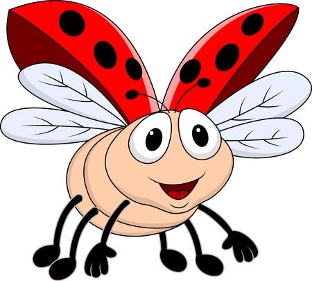 escarabajo: Lady bug vuelo