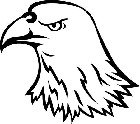 hawk feathers: Eagle head tattoo Illustration