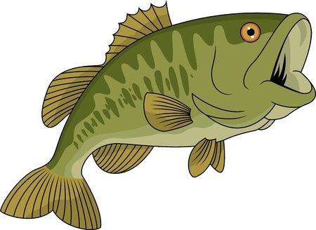 cartoon fishing: Bass fish