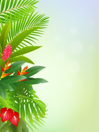 tropical forest background Stock Vector - 13497106