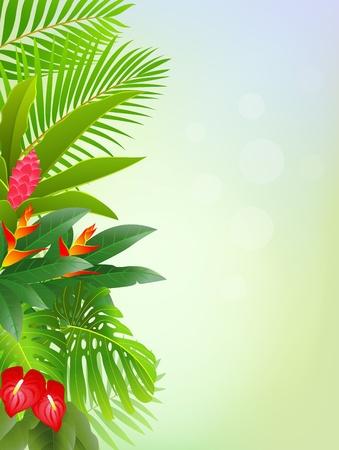 tropisch bos achtergrond