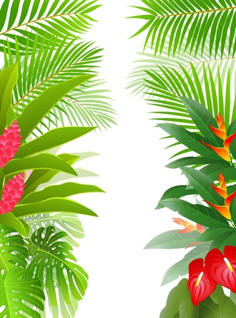 tropical forest background Stock Vector - 13497101