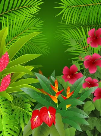 plante tropicale: fond for�t tropicale