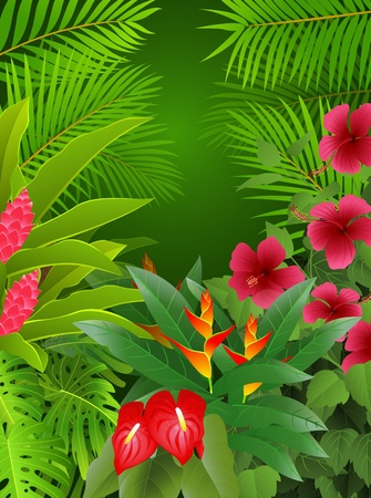 hibiscus flowers: tropical forest background
