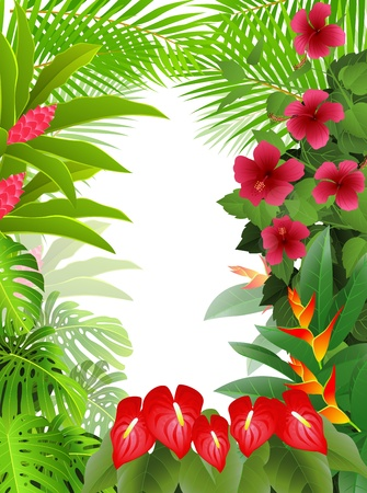 tropical forest background Stock Vector - 13497246