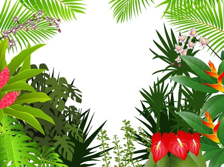tropical border: tropical forest background