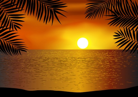 폴리네시아: 열 대 해변 배경 일러스트