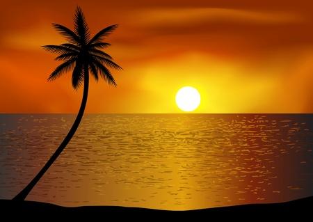 熱帯のビーチの背景
