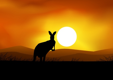 African Sunset background with kangaroo Vector