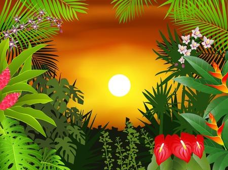 clima tropical: La naturaleza de fondo Vectores
