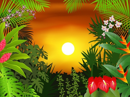tropical border: Nature background Illustration