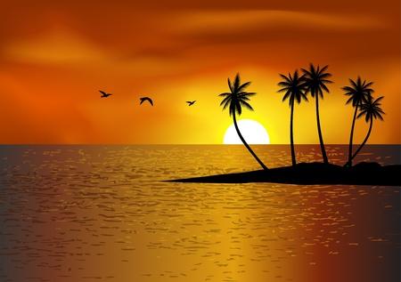 mouettes: Fond de plage tropicale Illustration