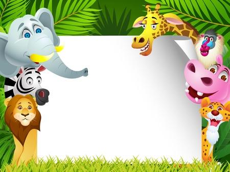 mandril: Animal, divertido con la muestra en blanco Vectores