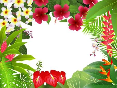 plante tropicale: Fond des plantes tropicales Illustration