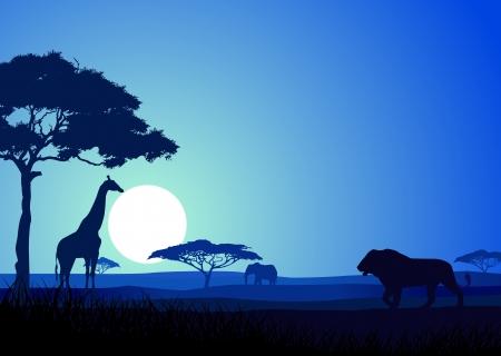 savanna: Safari background