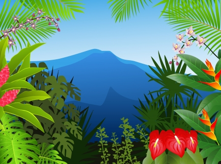 rainforest tree: Tropical forest background