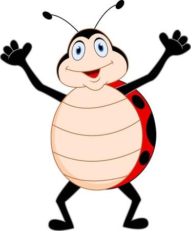 ladybirds: Ladybug cartoon