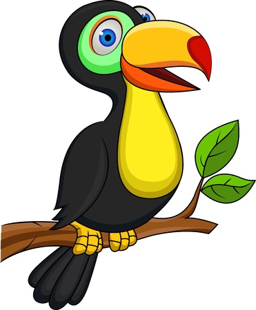 exotic pet: Toucan bird  Illustration
