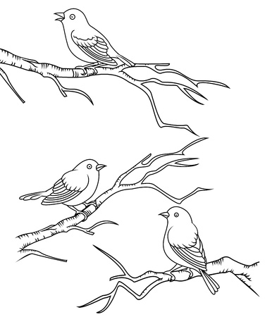 birdies: Bird sitting on a branch  Illustration