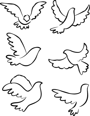 holy leaves: dove vector Illustration