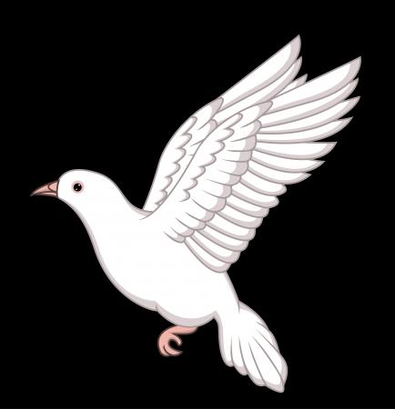 dove bird: white dove flying Illustration
