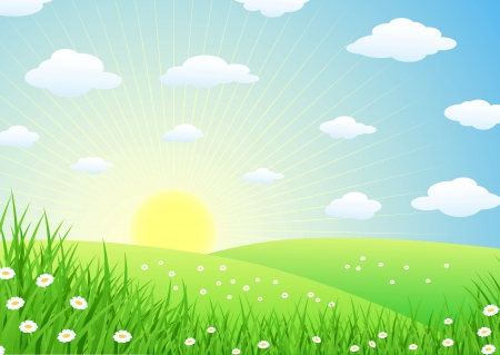 Landscape With Grass  Stock Vector - 13781061