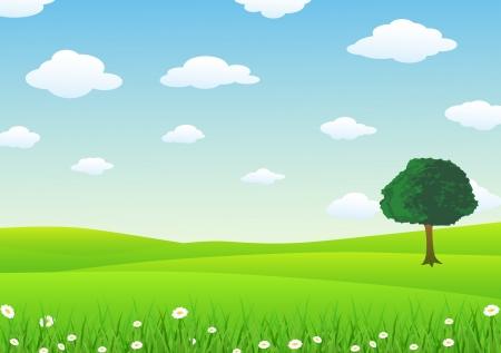 prato e cielo: Paesaggio Con Erba Vettoriali