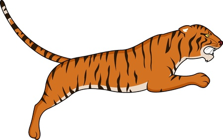 siberian: Tiger jumping  Illustration