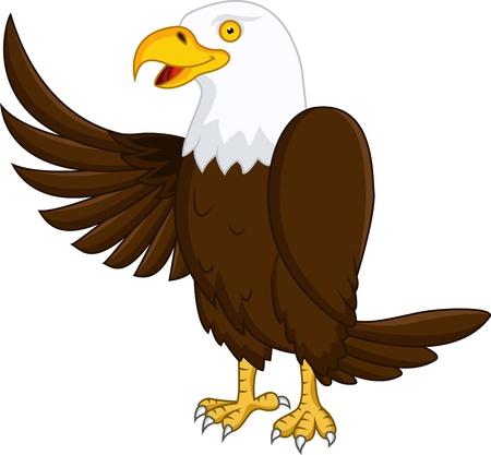 hawk: Eagle cartoon