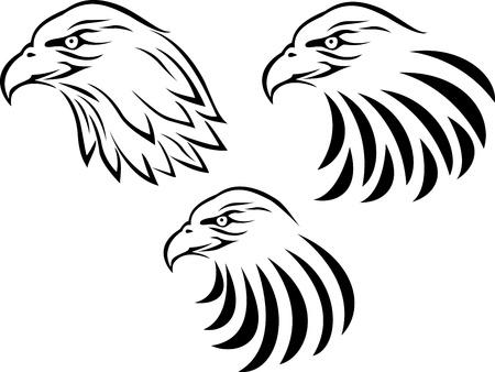 halcones: águila cabeza tatuaje Vectores