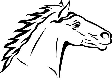 steed: horse tattoo