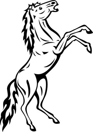 standing horse Stock Vector - 13781047