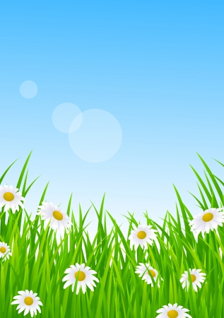 Landscape With Grass Stock Vector - 13781052