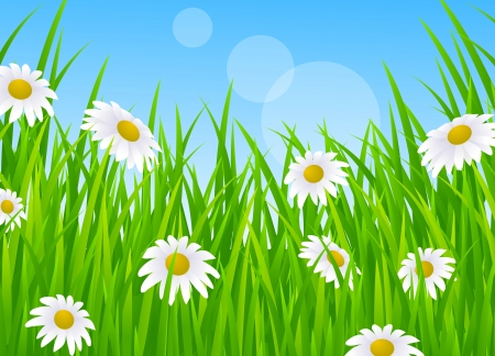 Landscape With Grass Stock Vector - 13781437