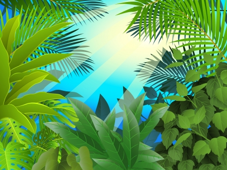 mystical forest: Tropical forest background