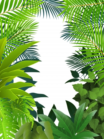 Fond de la for�t tropicale Illustration