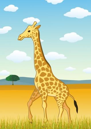 Giraffe against savannah landscape  Illustration