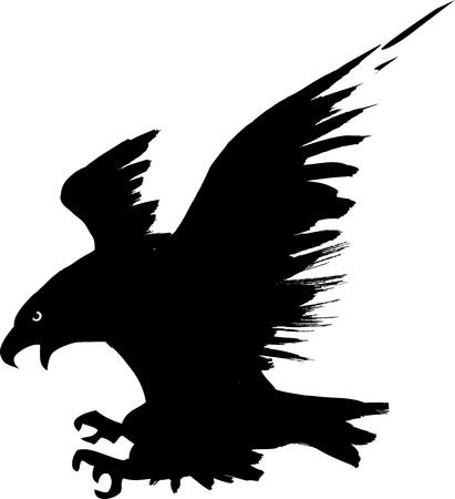 aigle: Aigle en plein vol Illustration