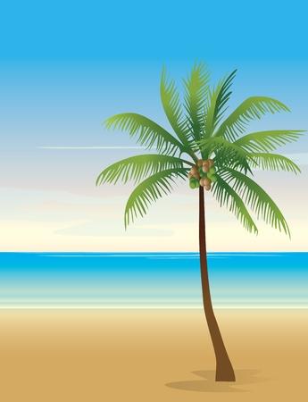 Tropical beach background Stock Vector - 13784055